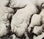 LKS-P306 白雪是白的 2016 石版 48 x 66 cm